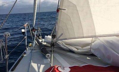 corsi vela Genova