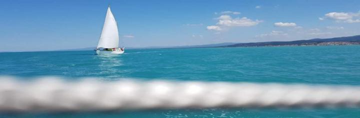 corsi vela regata